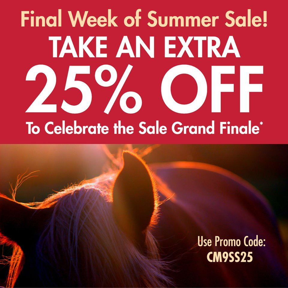 Take an Extra 25% Off to Celebrate the Sale Grand Finale